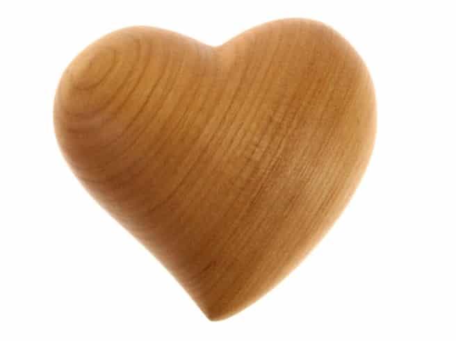 Herz asymetrisch, groß
