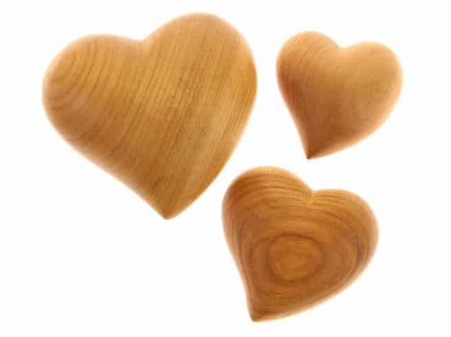 Herz asymetrisch, klein