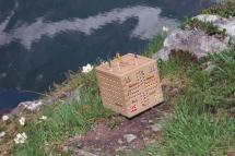 Spielewürfel am Seebachsee